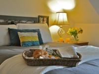 fb-exp-bfast-bed