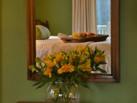 fb-exp-flowers-mirror