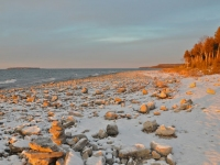 winter-beach-rocks